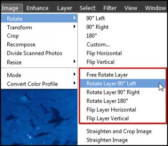 Photoshop Elements Rotate Layer Only