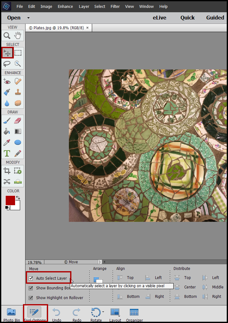 Photoshop Elements Move Tool Problems