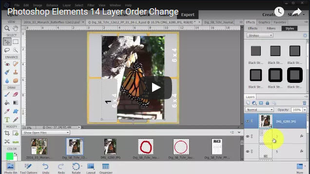 Photoshop Elements 14 - Layer Order Change