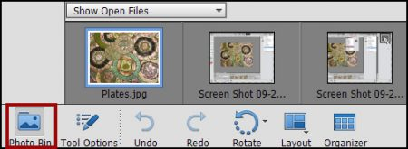 PSE Photoshop Elements Photo Bin
