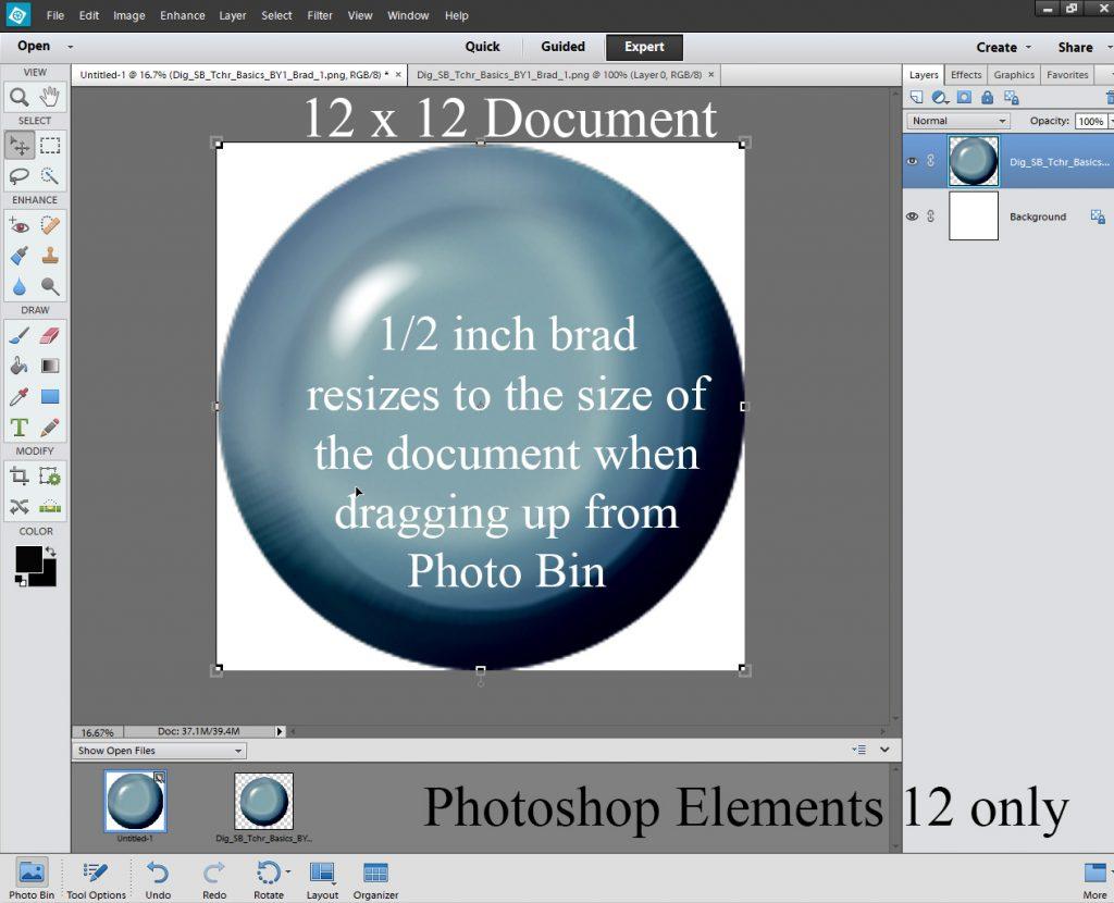 Photoshop Elements 12 Resizing Problem