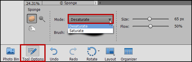 Photoshop Elements Sponge Tool Problems